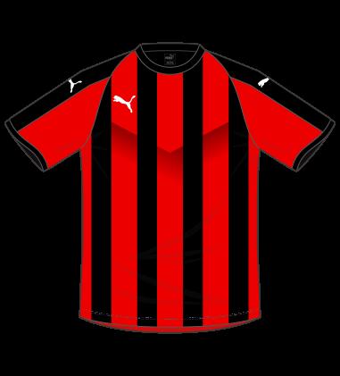 puma プーマ LIGA ストライプ ゲームシャツ